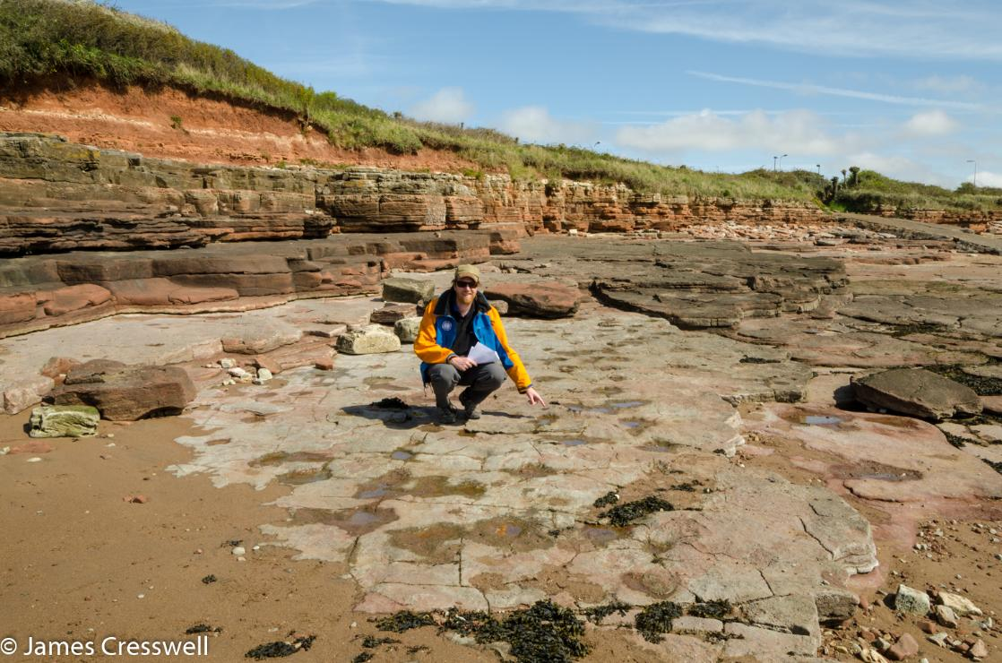 A photograph of James Cresswell pointing at a dinosaur trackway, taken on the GeoWorld Travel England and Wales geology trip, tour and holiday