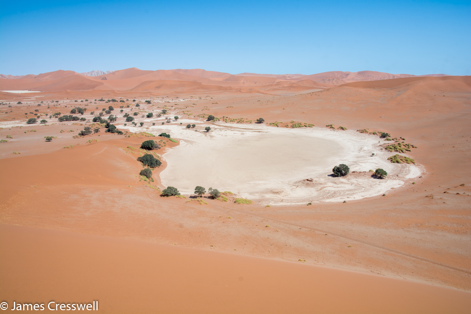 A photograph of Sossusvlei Pan taken on a GeoWorld Travel Namibia geology trip, tour and holiday