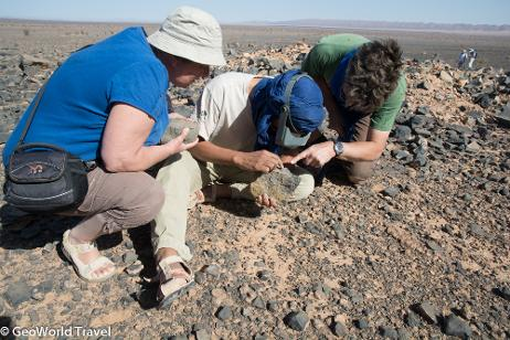 Examining a fossil at Jbel El Mrakib, Maider basin,  with a local fossil miner. Morocco fossil holiday