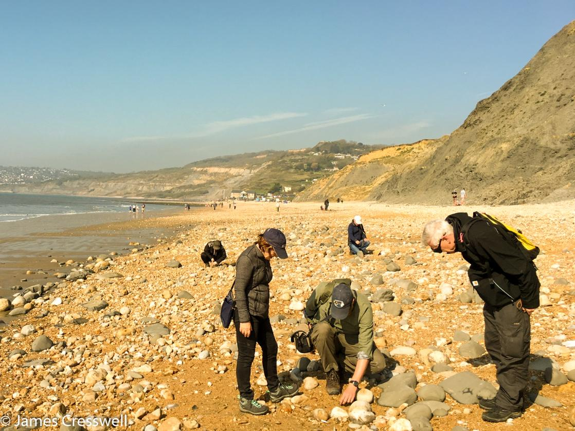 A photograph of three people lokking for fossils on the Jurassic Coast World Heritage Site on a GeoWorld Travel England geology and fossil trip, tour and holiday